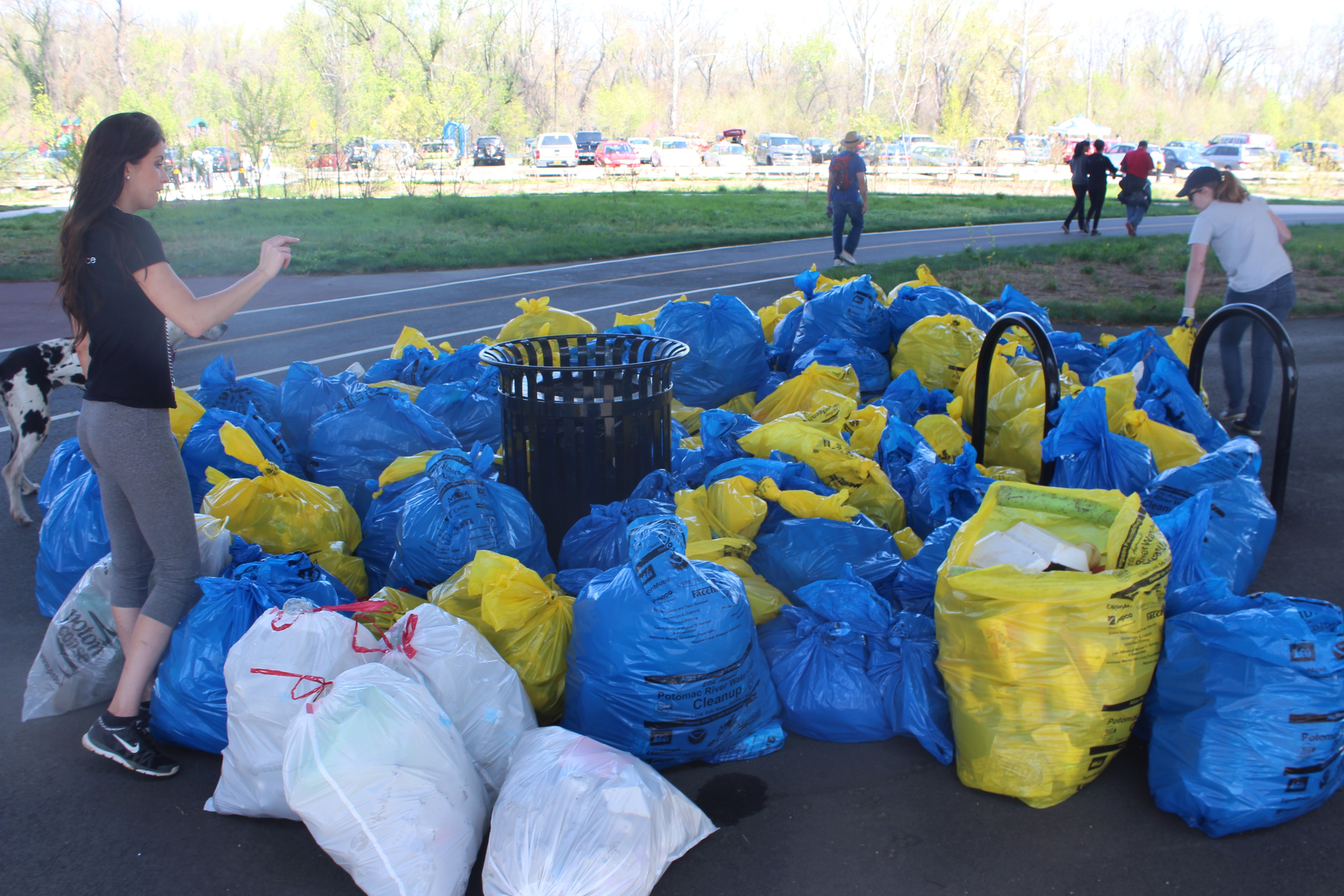 Over 160 Garbage Bags of Trash and Recyclables Collected!